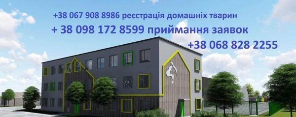 59243910_1544010095733367_5153389309801267200_n_1
