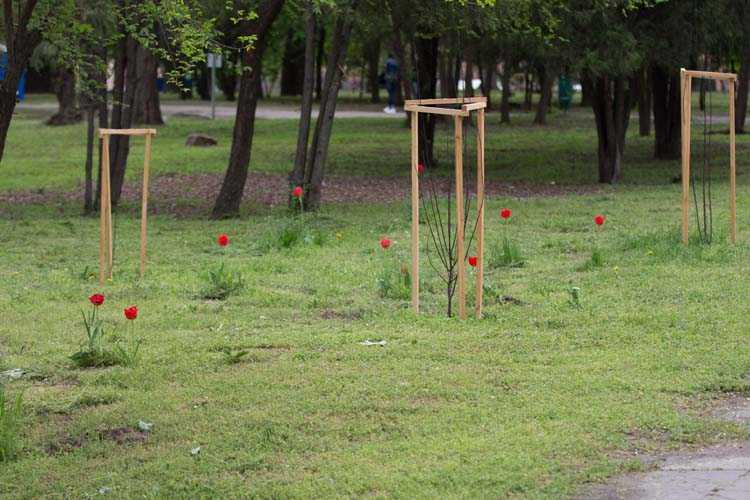Відновлення паркових квітників (1)