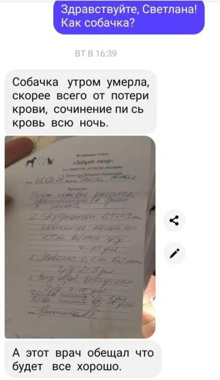 СКРИН_В_КОНЕЦ