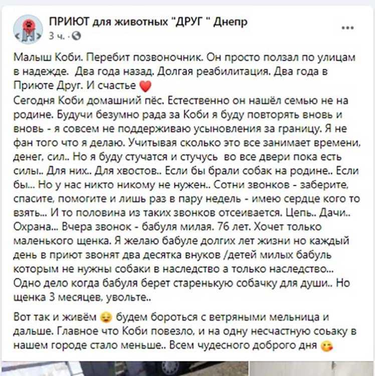 скан_собака